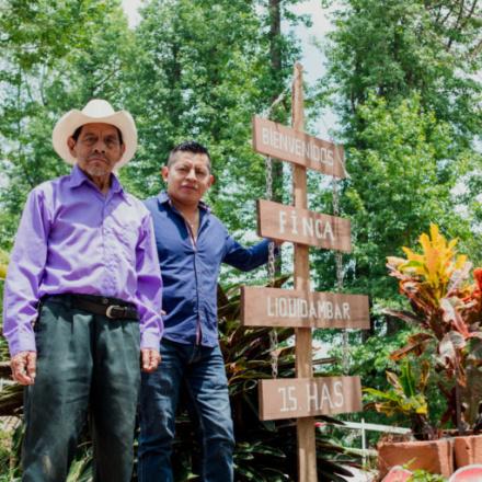 Honduras Finca Liquidambar