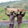 Cafea Burundi Yandaro
